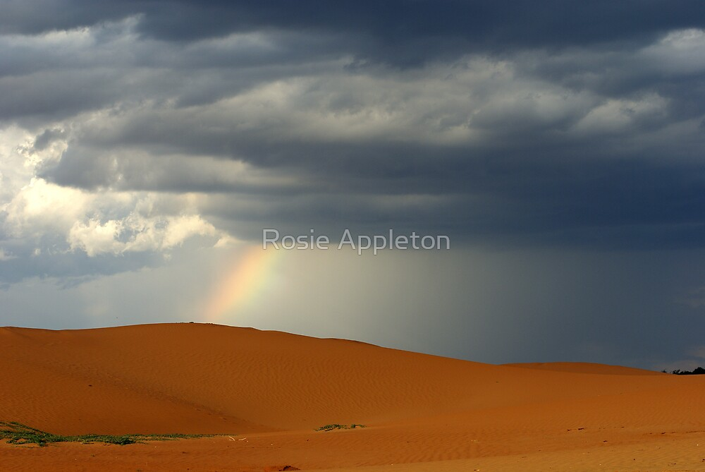 Rainbow on the hills - Wentowrth, NSW by Rosie Appleton