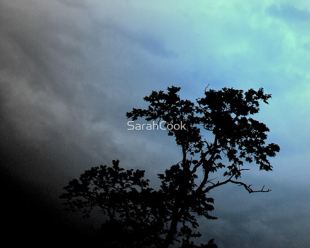 Stormy Night by SarahCook