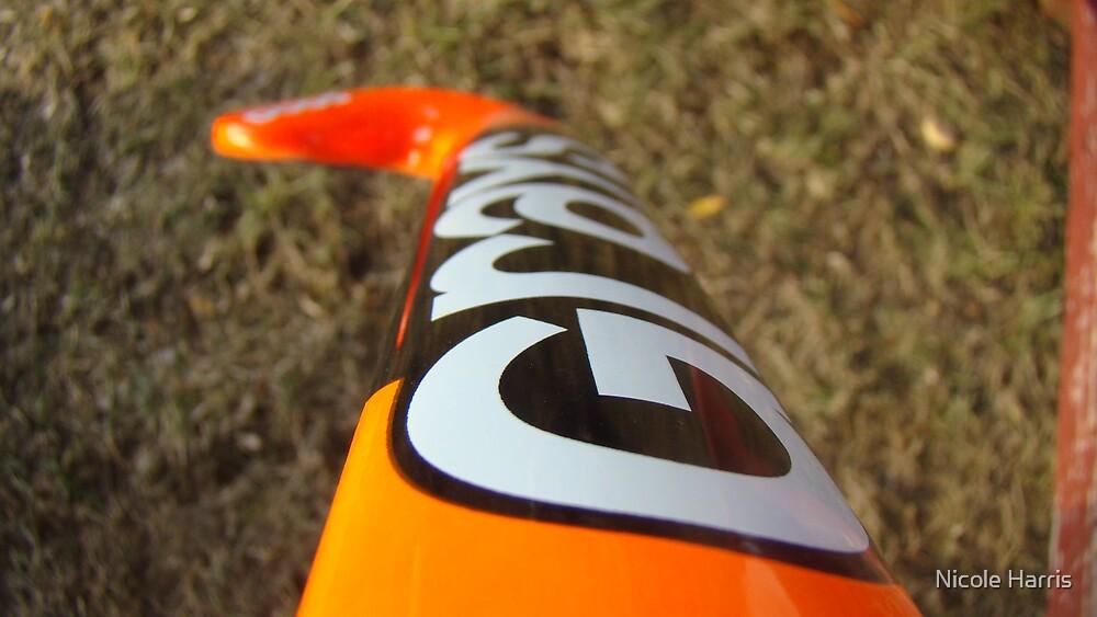 Field Hockey Stick by Nicole Harris