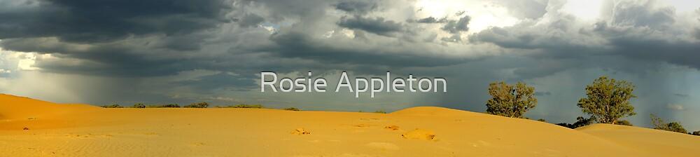 Stormy Skies by Rosie Appleton