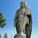 A Viking by Teresa Zieba