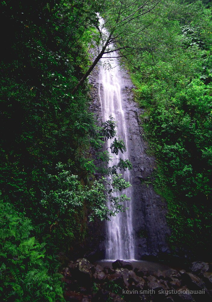 Manoa Falls by kevin smith  skystudiohawaii