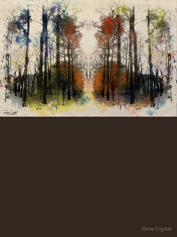 An Autumn Walk-through by imagesbycrystal