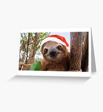 Funny baby sloth in a Christmas Santa hat Greeting Card