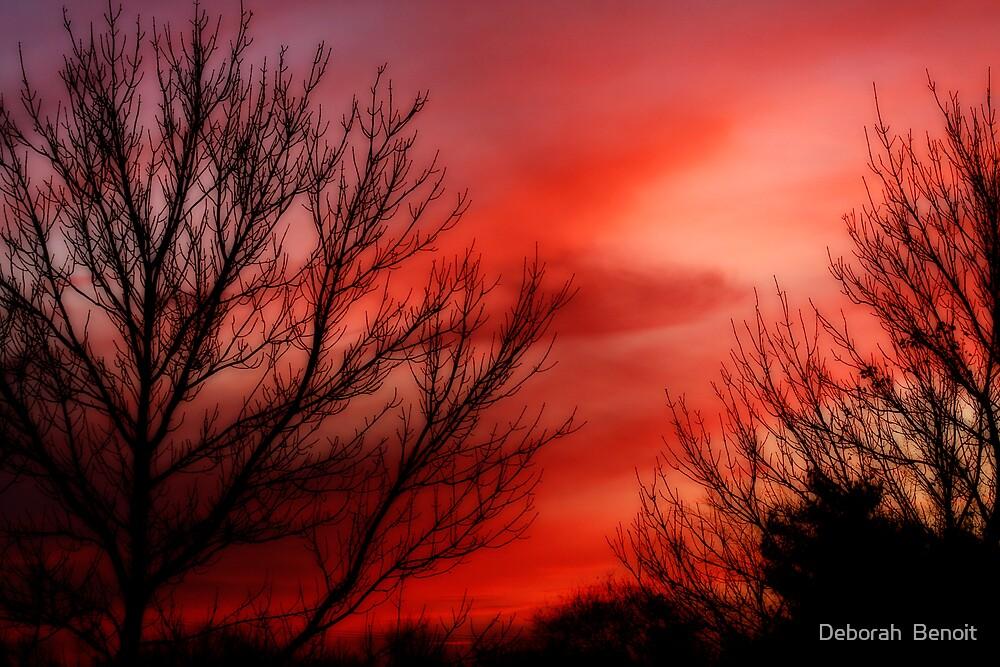 Sky Of Scarlet by Deborah  Benoit