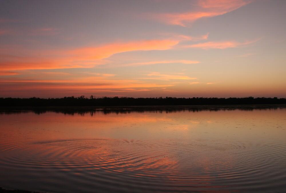 Mangrove Sunset by noffi