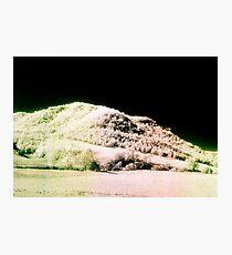 Landscape for Piet Mondrian # 2 Photographic Print