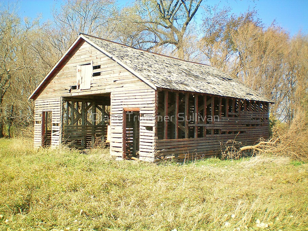 Rickity OLD Farm shed by Diane Trummer Sullivan