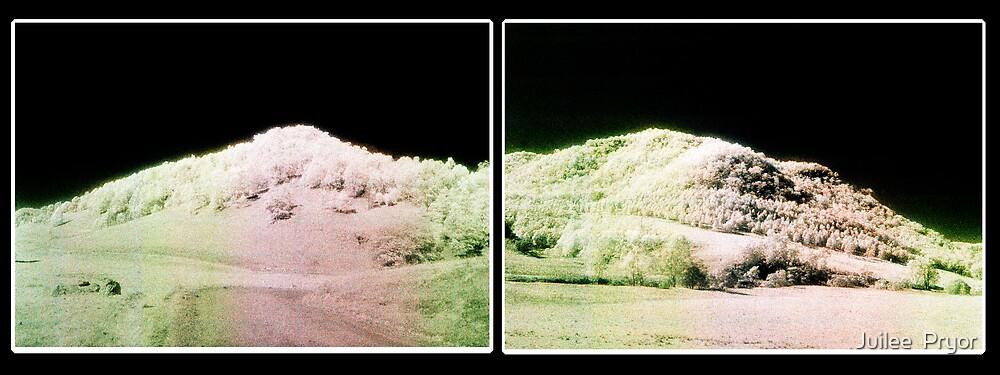 Landscape for Piet Mondrain #1 & #2 mockup by Juilee  Pryor
