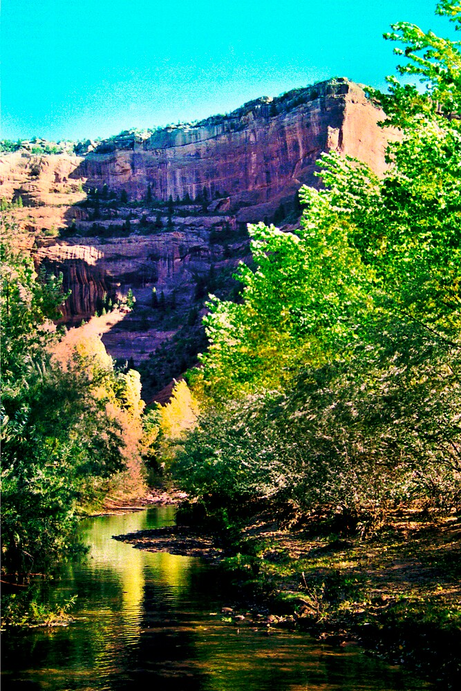 A Stream in Canyon De Chelley by Habenero