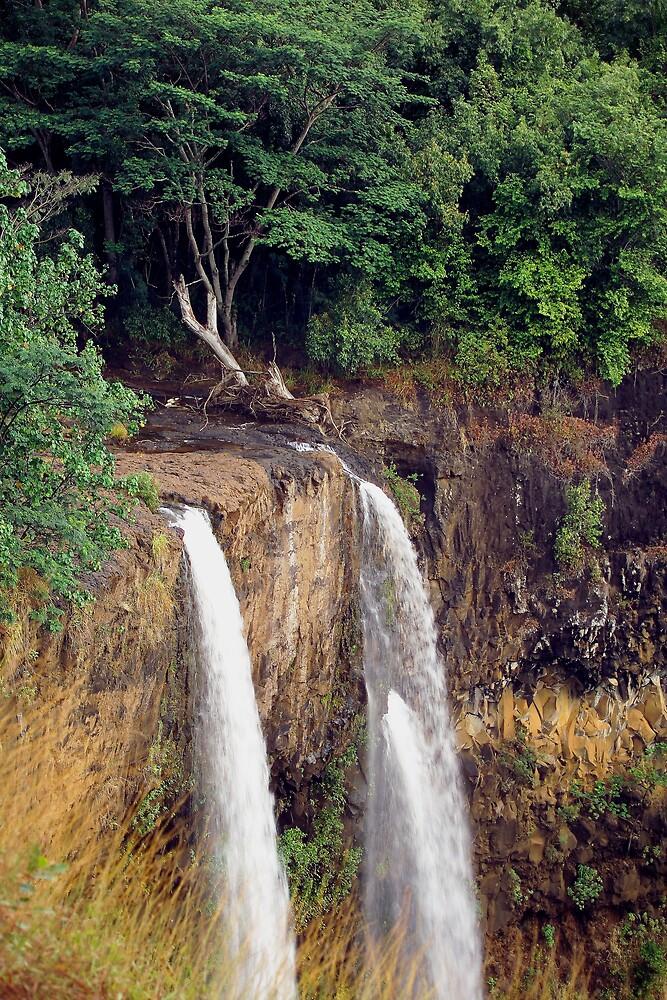 Waimea Falls by Dennis Begnoche Jr.