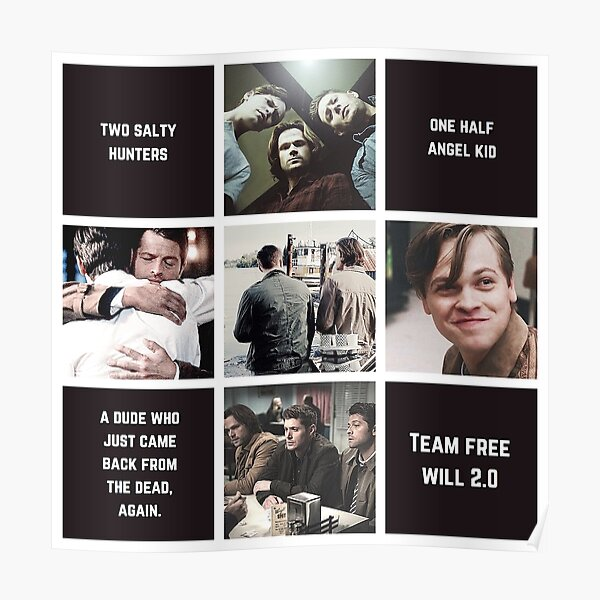 Esthétique: Team Free Will 2.0 (version classique) Poster