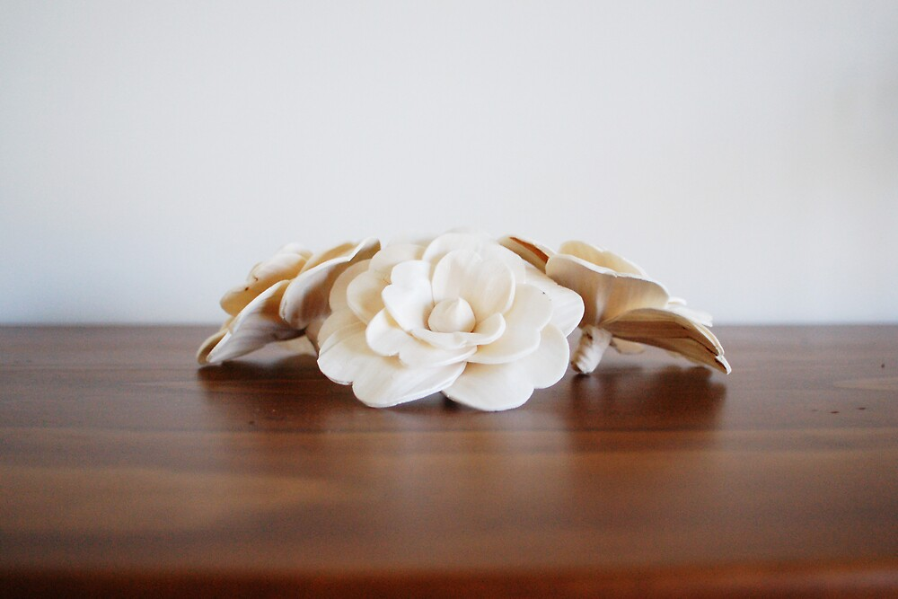 cream flowers by RachelMeszaros