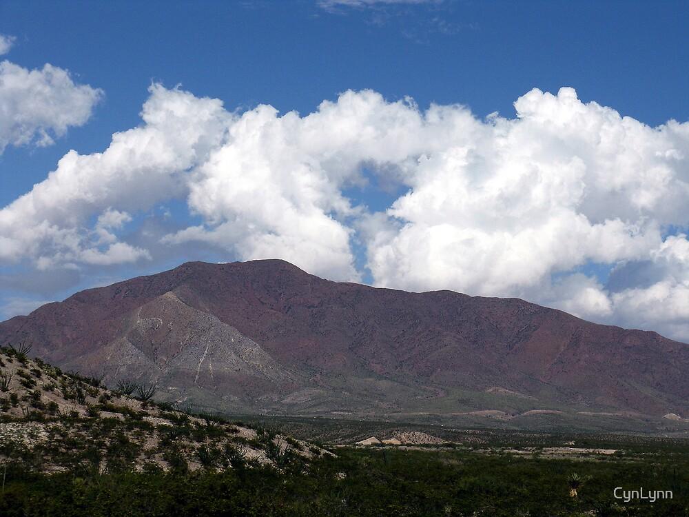 El Paso Texas by CynLynn