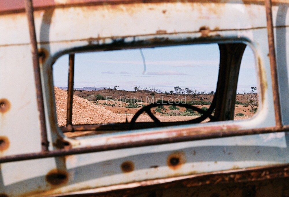 Windscreen Views by Felicity McLeod