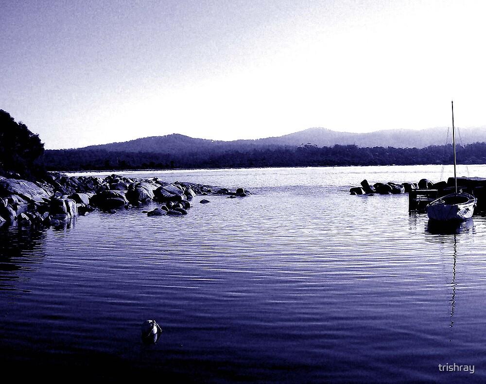 Binalong Bay Tasmania by trishray