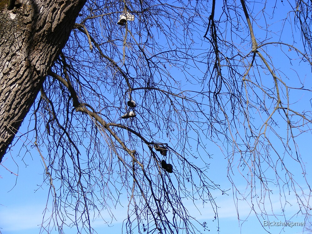 The Trees Have Shoes by Blcksheepmel
