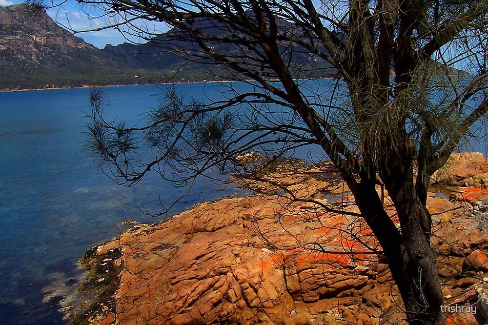 Freycinet - Tasmania by trishray