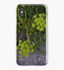 Rock Samphire, Inishmore, Aran Islands iPhone Case/Skin