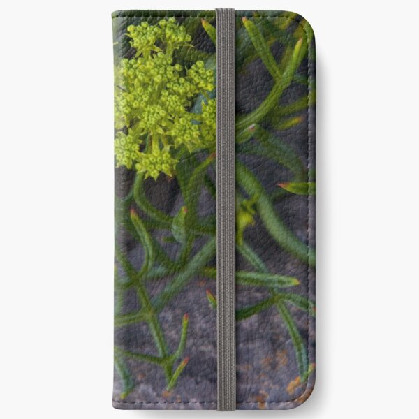 Rock Samphire, Inishmore, Aran Islands iPhone Wallet
