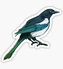 Magpie Sticker