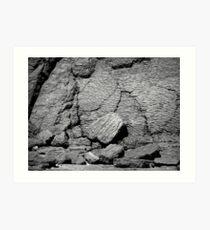 Crust Art Print