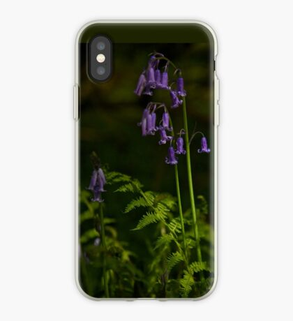 Two Bluebells in Prehen Woods, Derry iPhone Case