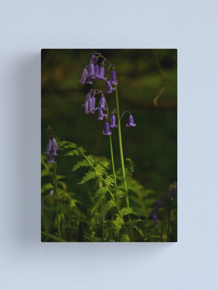 Alternate view of Two Bluebells in Prehen Woods, Derry Canvas Print