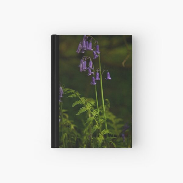 Two Bluebells in Prehen Woods, Derry Hardcover Journal