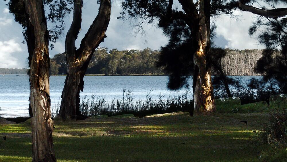 lake munmorah by adam pearson