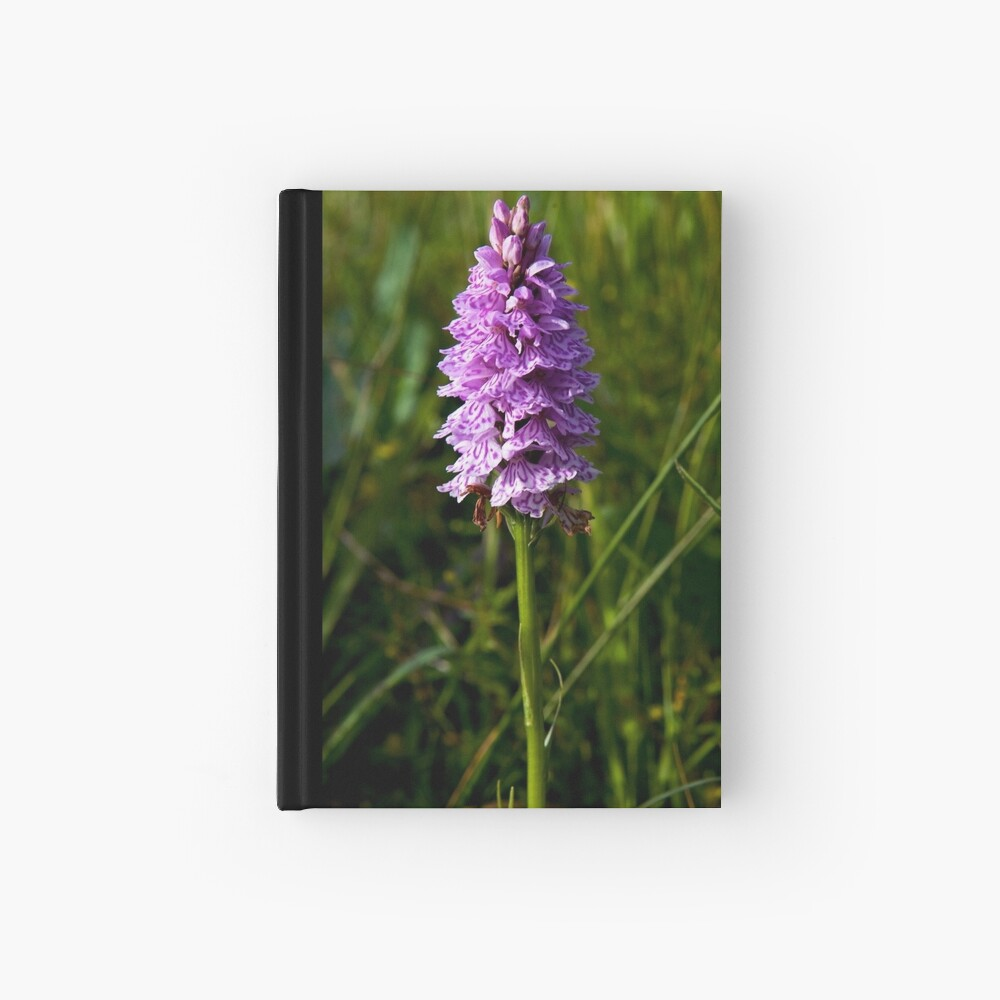 Spotted Orchid, Kilclooney, Donegal Hardcover Journal