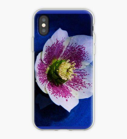 Hellebore Flower Head iPhone Case