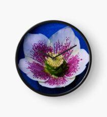 Hellebore Flower Head Clock