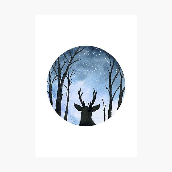 The Stag on a Winter Night Photographic Print