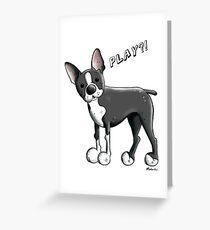 Boston Terrier Dog Cartoon Greeting Card