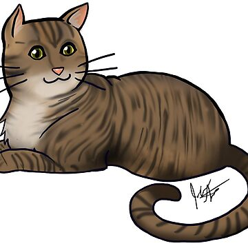 Brown Tabby Cat by jameson9101322