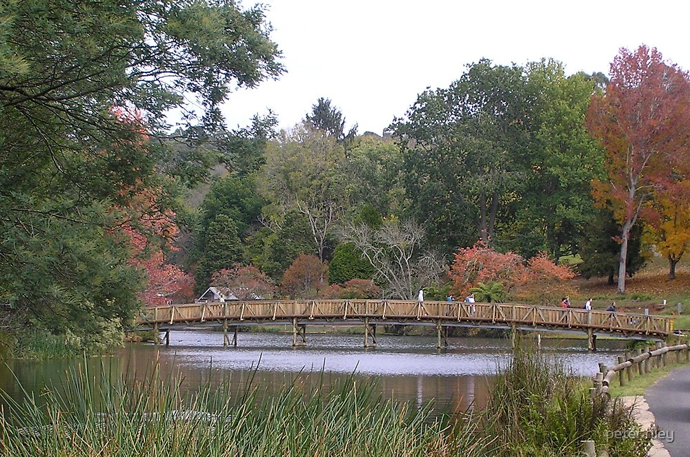 autumn colour at lake emerald by peter riley