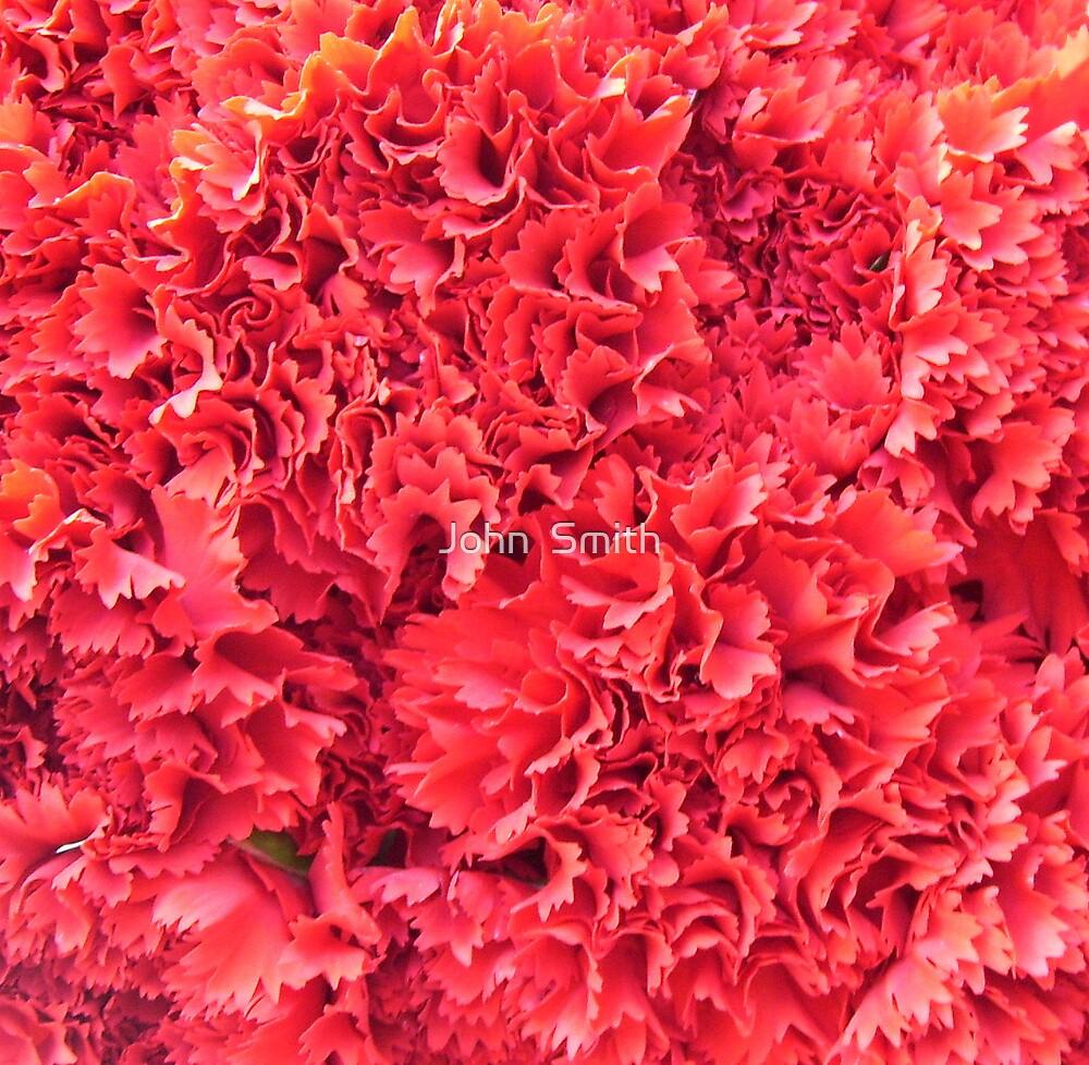 """ Carnations."" by John  Smith"