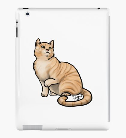 Big Tabby Cat iPad Case/Skin