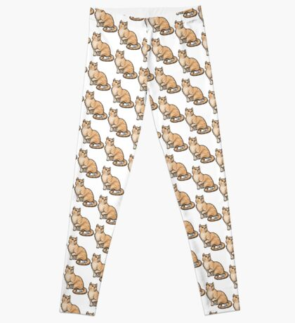 Big Tabby Cat Leggings