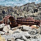 King Island Colours 4 by Pauline Tims