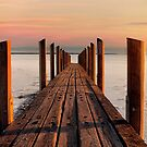 JETTY IN THE SUN by Andrew Dickman