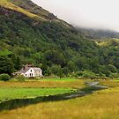 Snowdonia Valley, Wales by Bev Pascoe