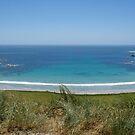Cape Wickham, King Island by Pauline Tims
