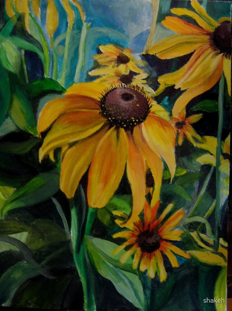 Sunflowers by shakeh