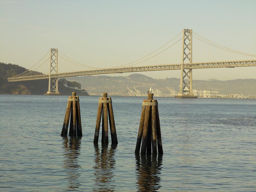 Bay Bridge - San Francisco, CA by Kurt Kamka