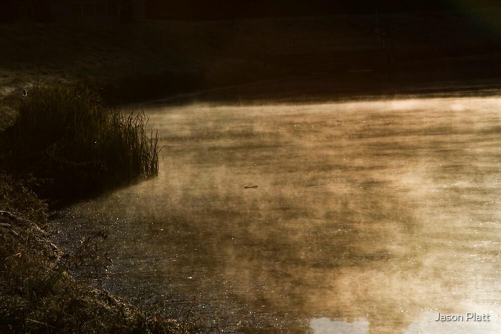 dark mood passing by Jason Platt