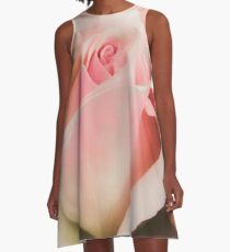 Blushing Pink  A-Line Dress