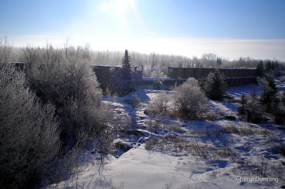 pinawa winter by Cheryl Dunning