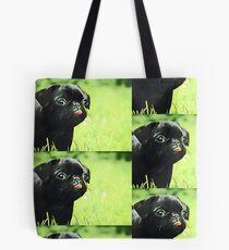 Mops Tote Bag